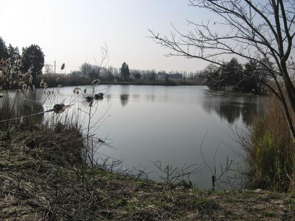 Via libera al nuovo campeggio di Lispida… ma con prescrizioni di tutela ambientale.