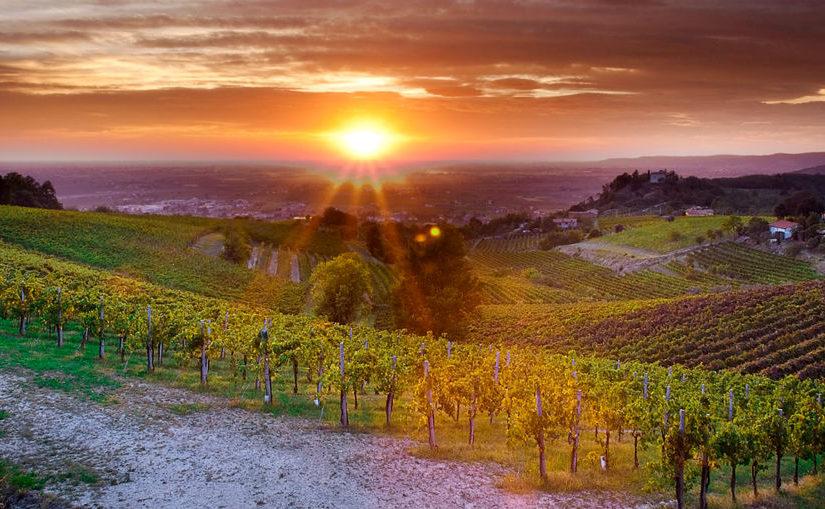 Colpo di mano della Regione Veneto: Commissariato il Parco Colli