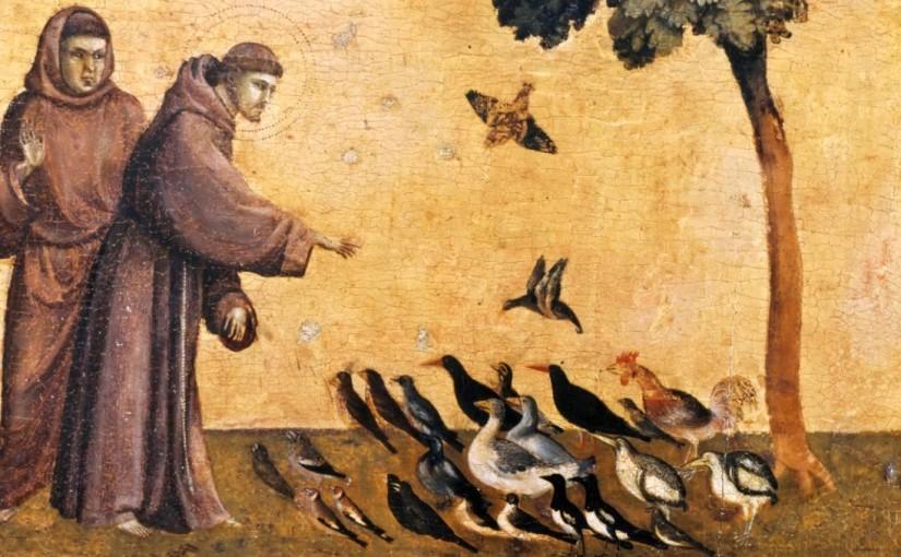 Il 65% delle specie ornitiche cacciabili in Veneto è a rischio