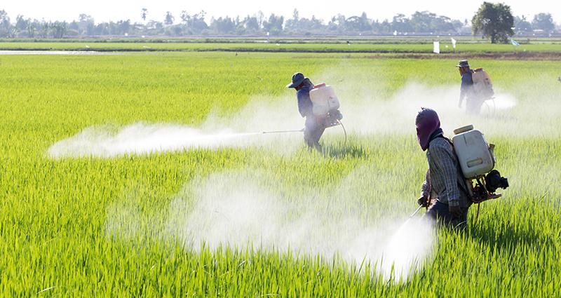 L'economia circolare dei pesticidi